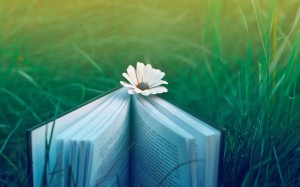 Field-Book-Flower-Grass-wallsfeedcom