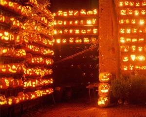 halloween jackolanterns somany